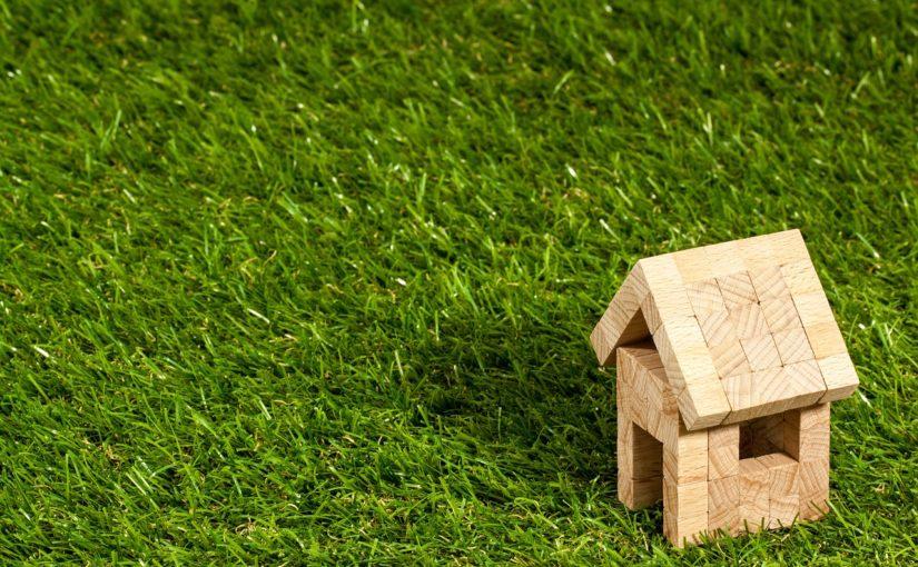 zielony dach koszt